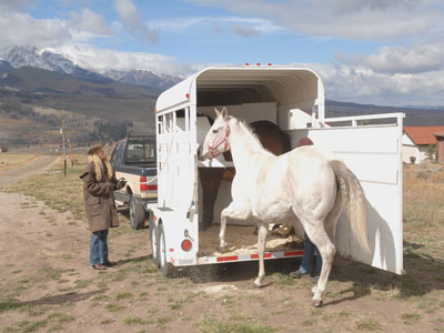 Loading and Hauling a Horse: Using Your Own Vehicle